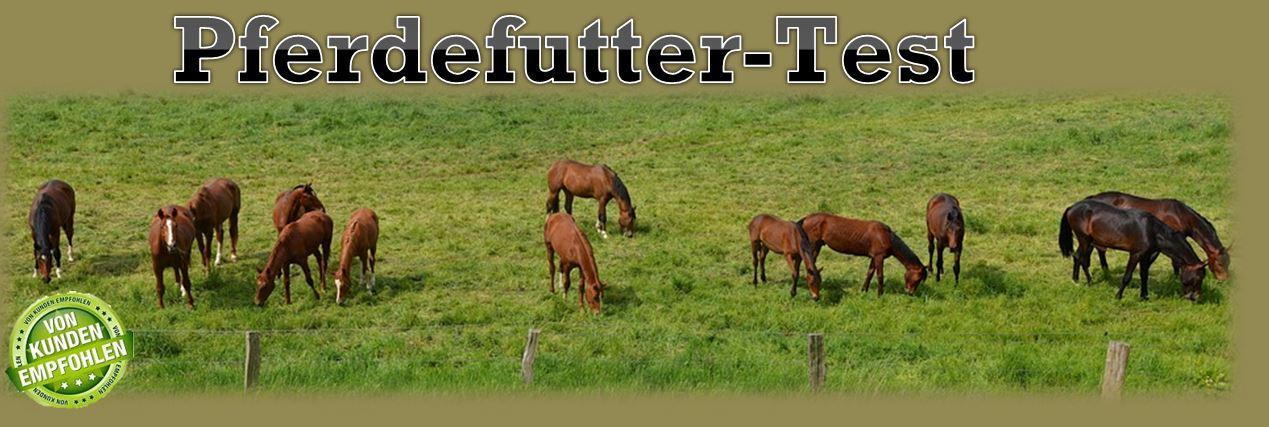 Pferdefutter Test ++ Testsieger ++ Top 5 Produkte